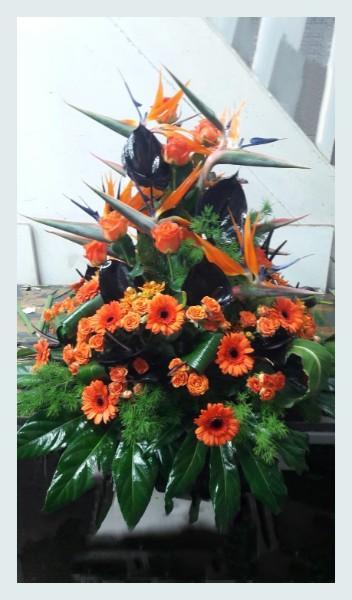 Diverses compositions florales
